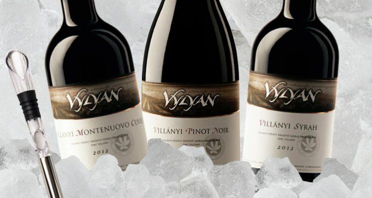 Vylyan Montenuovo, Pinot Noir, Syrah akció