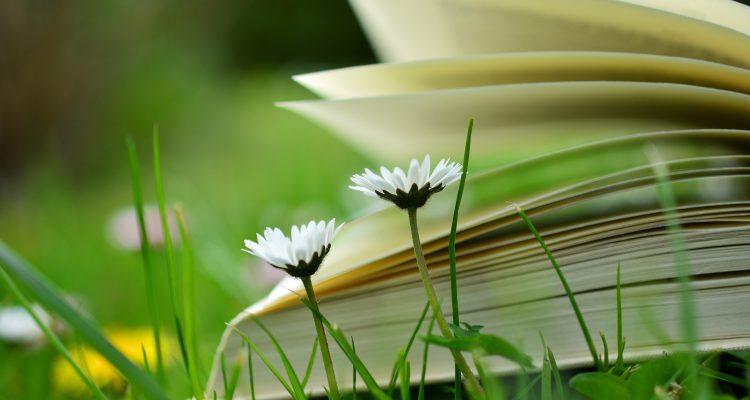 Könyvhét okozta regénymérgezésünk lesz. Alig várjuk.