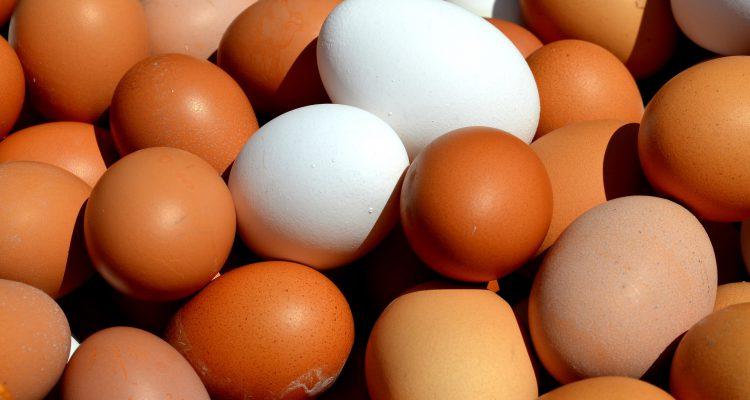 Fipronillal mérgezett tojás. A kép illusztráció, forrás: Pixabay.