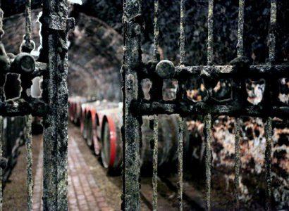 Chateau Cloche száraz szamorodni 2008, Tokaj-Hegyalja